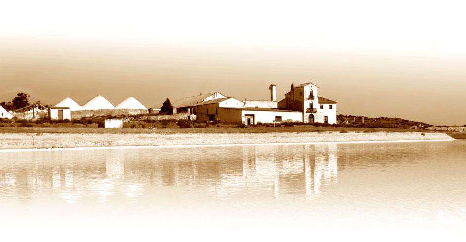 Castillo de Villena, Salina de la Fortuna